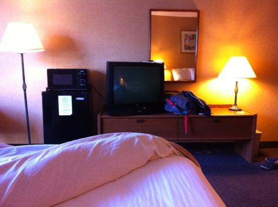 Monterey Bay Travelodge: hotel camera 203