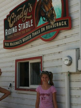 Cindy's Riding Stable Market Street: The horses do not winter on the island