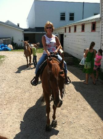 Cindy's Riding Stable Market Street: All saddled up