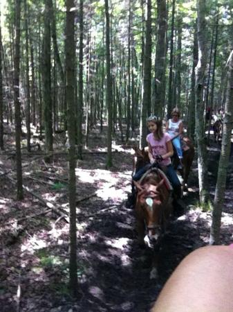 Cindy's Riding Stable Market Street: The 1 hour ride began near the Grand Hotel and continued through neighborhoods and the woods