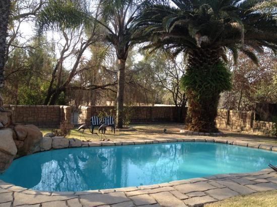 Villa Schreiner : pool