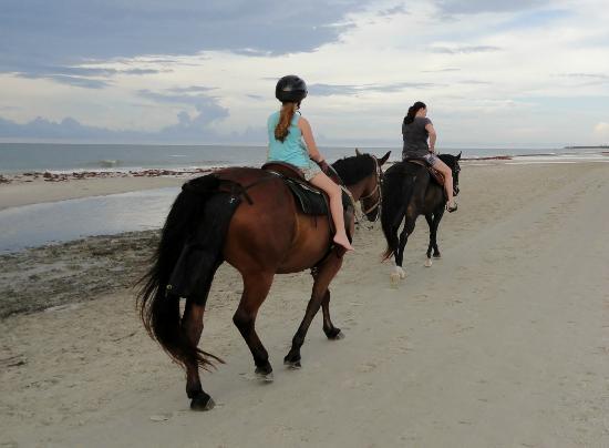 Two-Bit Stable: Gentle horses, beautiful beach...