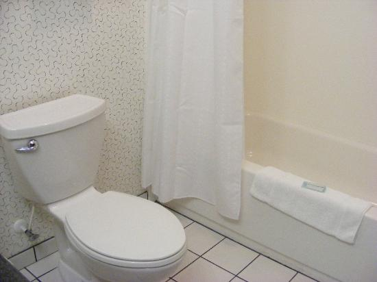 Holiday Inn Express Indianapolis - Southeast: Le toilet and bathtub/shower