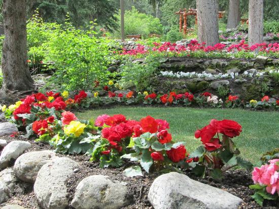 Cascade Gardens: Beautiful flowers in Cascade Garden