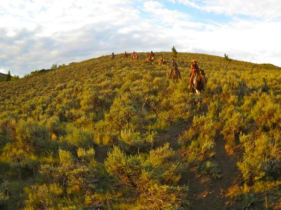 Granite Mountain Outfitters: Evening trail ride