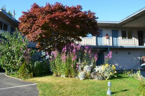 Riviera Inn: Well kept grounds and nice flower beds
