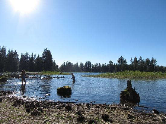 Manzanita Lake Campground: Swimming at Manzanita Lake