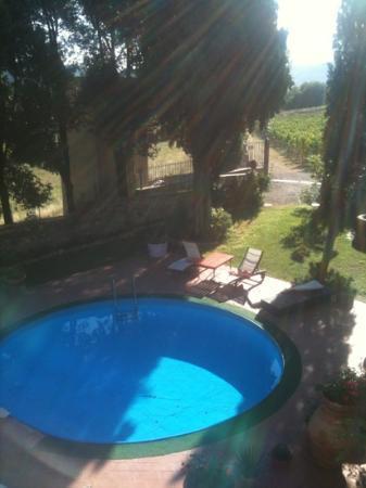 Fattoria Villa Le Sorgenti : Poolen