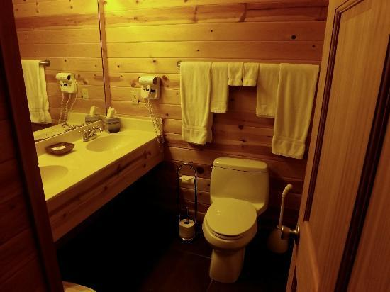 Cabins at Sugar Mountain : Bathroom