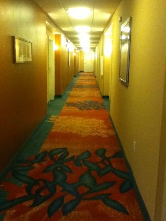 Residence Inn Chicago Midway Airport: Hallway