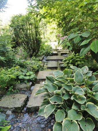 Jardin Agapanthe Dieppe 2019 Ce Quil Faut Savoir Pour Votre