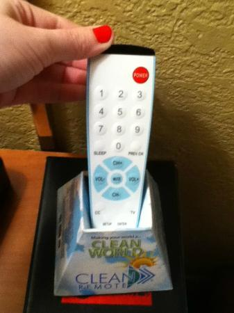 "Wyndham Garden Kenosha Harborside: Cute ""clean"" remote. One of the few clean things in here..."