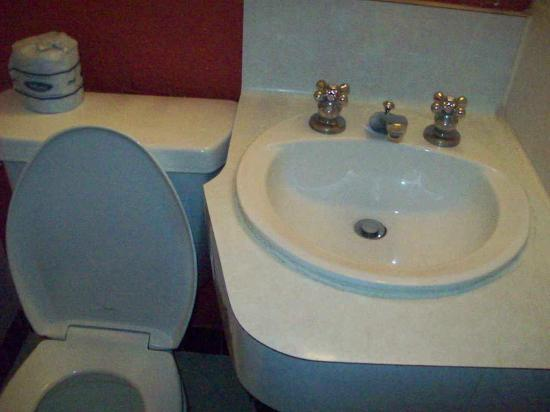 Golden Gate Hotel & Casino: Sink and toilet