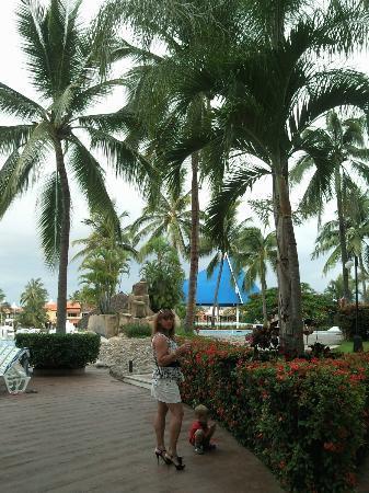 Vamar Vallarta All Inclusive Marina and Beach Resort: Zona de alberca