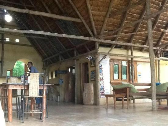 Turtle Cove: Th cmmunal restaurant/ lie around and read/ coffee area
