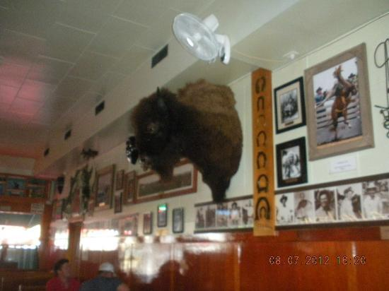 Rainbow Cafe: Buffalo Bill