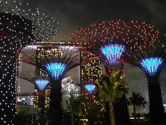 gardens by the bay night view of the garden with fireworks