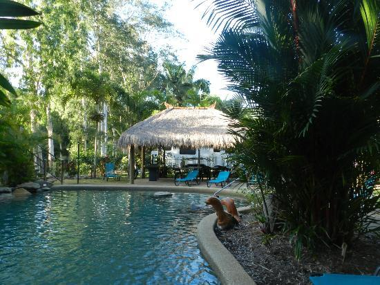 BIG4 Port Douglas Glengarry Holiday Park: Pool - BBQ area