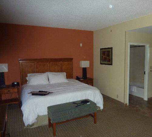 Hampton Inn Okeechobee - Lake Okeechobee: suite avec lit king size