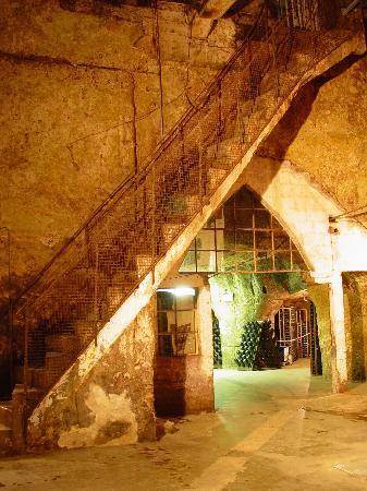 Caves Louis de Grenelle : Verrière dans les galeries