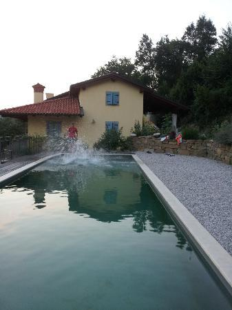 Kmetija Stekar: Ecco pool