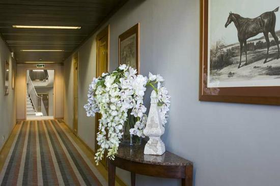 Polo Hotel: Corridor - detail