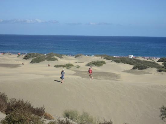 Corallium Dunamar By Lopesan Hotels : dunas