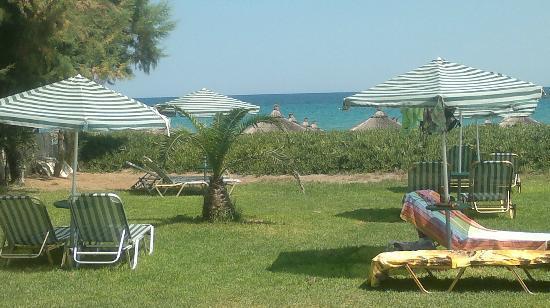 Plaka Beach: Verde