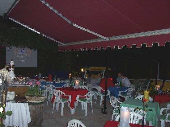 Al Gabbiano Hotel: Giardino