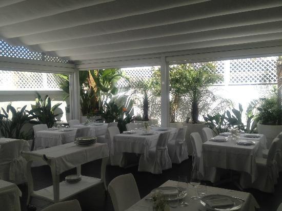 Giardino D Inverno Ristorante : Il giardino d inverno foto di ristorante giannino bari