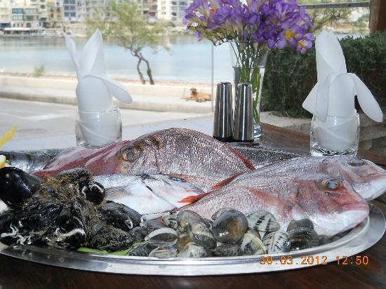 La Trattoria Restaurant: Fresh Fish Platter
