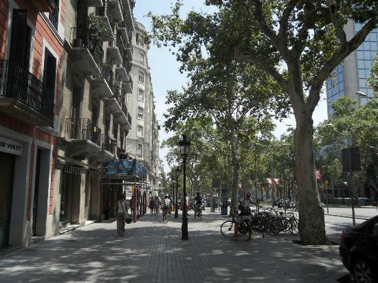 H Cristina Hotel: Calle Hotel