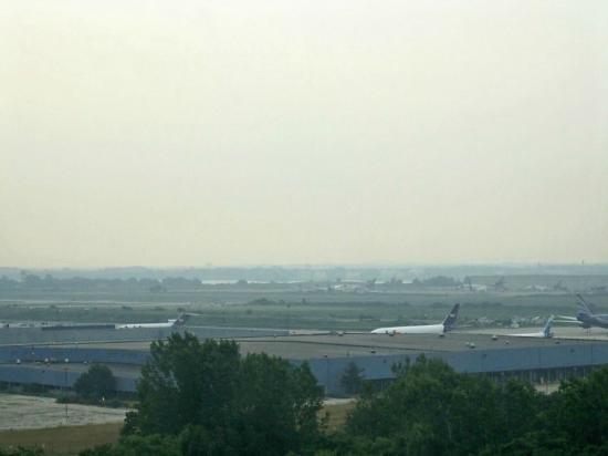 Renaissance Philadelphia Airport Hotel: View