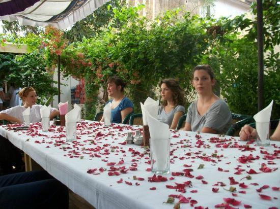 Om Shiva Garden Restaurant, Pushkar   Restaurant Reviews, Phone Number U0026  Photos   TripAdvisor