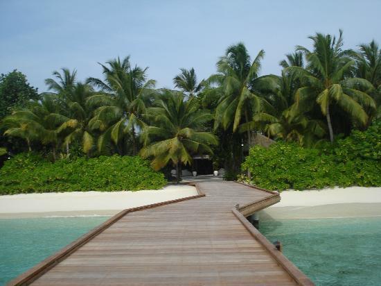 Kuramathi: Isla maravillosa