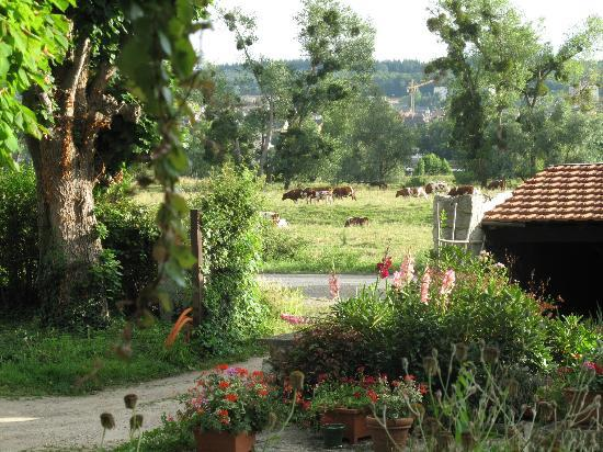 The Hermitage Bed & Breakfast: beautiful view from room