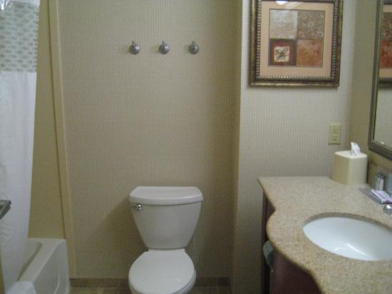 Hampton Inn Harrison: hampton inn bathroom very clean and spacious