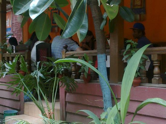 Hi Peace Garden Restaurant: GARDEN