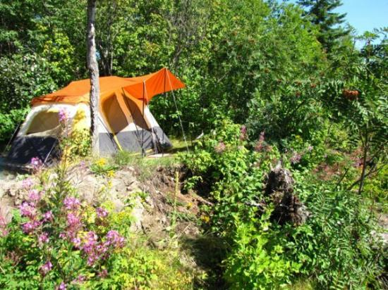 Lamb's Resort: tent