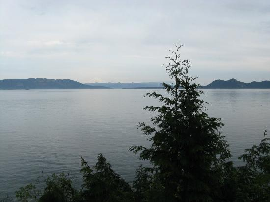 Orcas Island Bayside Cottages: 1