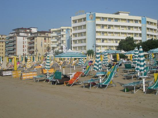 Hotel Alexander: Private beach