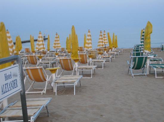 Hotel Alexander: Private beach