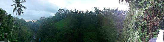 Ulun Ubud Resort & Spa: Panorama from our patio