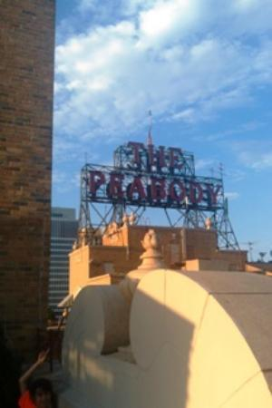 View from rooftop terrace picture of the peabody memphis for 5 daniel terrace peabody ma