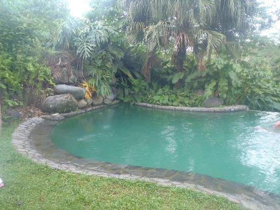 Sarapiquis Rainforest Lodge: pool