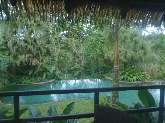 Sarapiquis Rainforest Lodge: bar view to pool