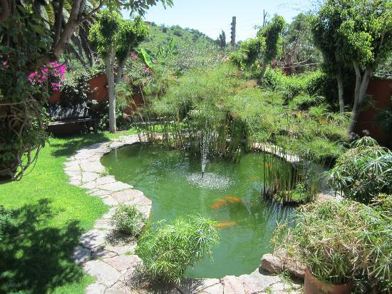 Casa Puesta Del Sol: Garden