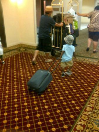 Holiday Inn Express Chicago O'Hare: 2 year old grandson had to take his own bags out, no dollys
