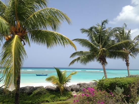 Coral Sands Beach Resort: GEWELDIG UITZICHT!!