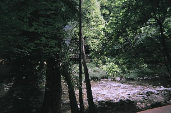 Ripplewood Resort: Beautiful Crystal Clear River!